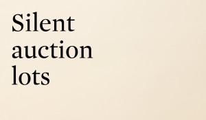 Silent Auction Lots